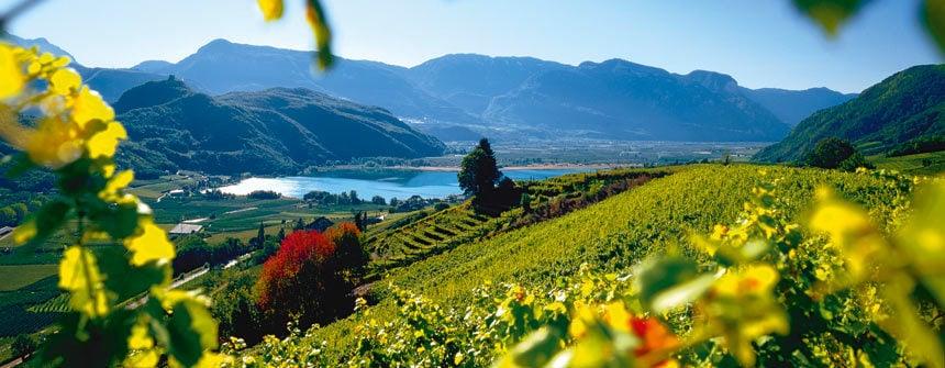Interessanti offerte per Bolzano e dintorni