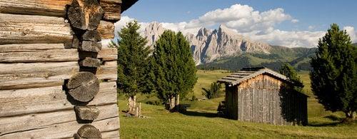 Esclusive offerte last minute per l'Alpe di Siusi