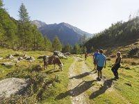 Giorni di relax in montagna e benessere