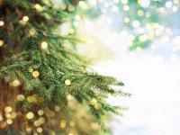 Natale al Grand Hotel