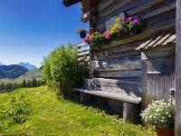 Settimane alpine