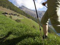 Settimana estiva in Alto Adige