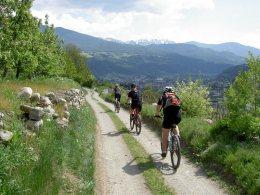 Individuali giorante in Mountain-Bike