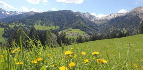 Primavera in Alta Val di Non