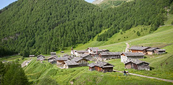 offerte soggiorni montagna - 28 images - soggiorno in montagna ...