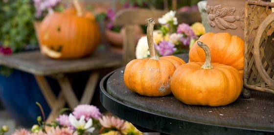 L'autunno è la stagione dei piaceri ...