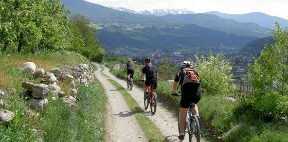 Giornate individuali in Mountain-Bike