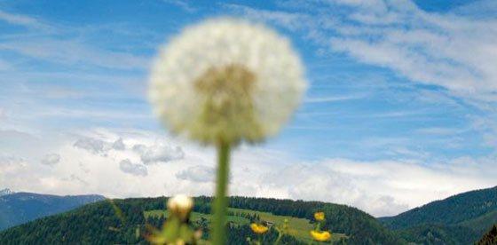 Primo assaggio d'autunno nelle Dolomiti